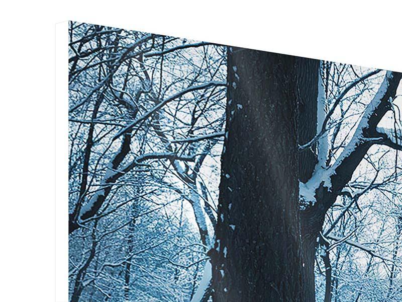 Hartschaumbild 3-teilig modern Der Wald ohne Spuren im Schnee