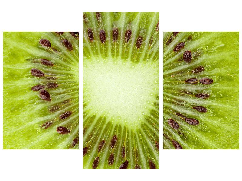 Hartschaumbild 3-teilig modern Close Up Kiwi