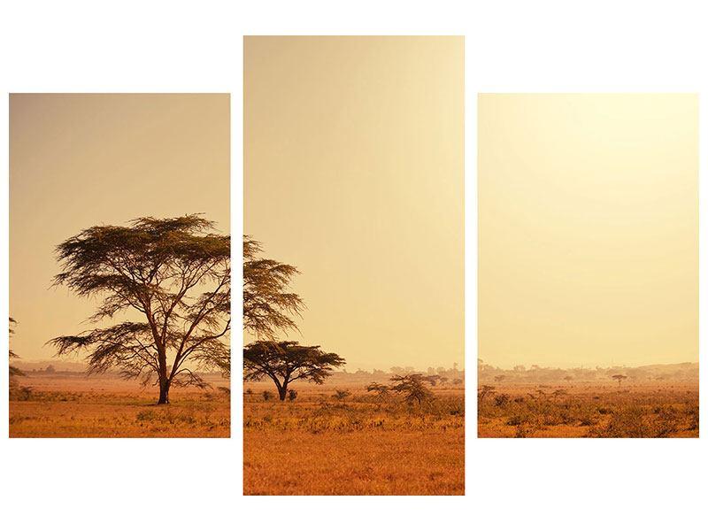 Hartschaumbild 3-teilig modern Weideland in Kenia