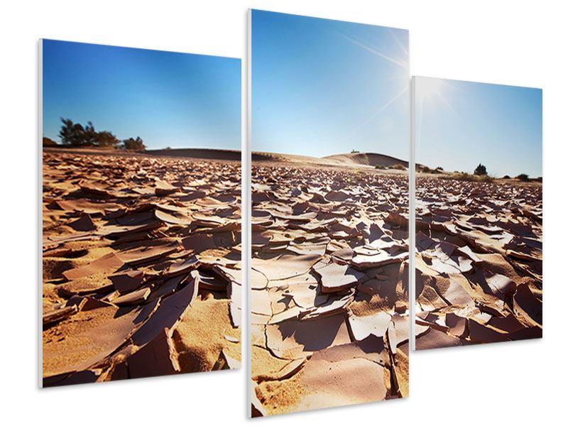 Hartschaumbild 3-teilig modern Dürre