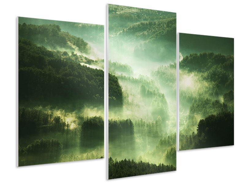 Hartschaumbild 3-teilig modern Über den Wäldern
