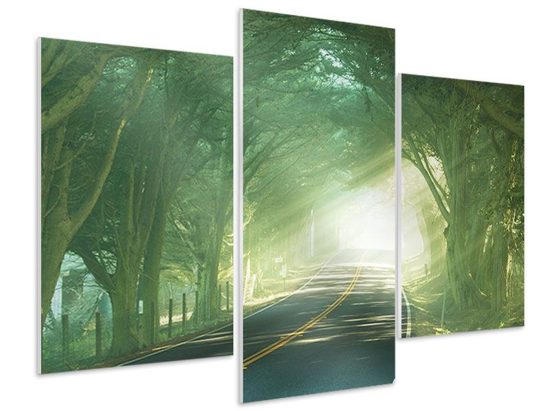 Modern 3 Piece Forex Print The Avenue