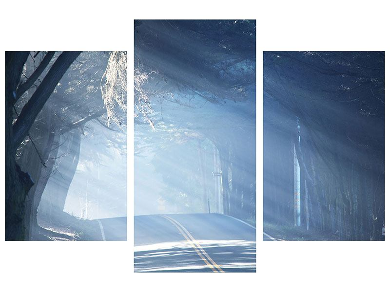 Hartschaumbild 3-teilig modern Lichtdurchflutete Baumallee