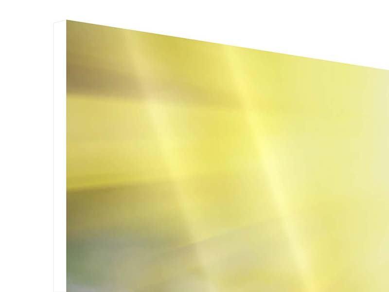 Hartschaumbild 3-teilig modern Blumige Wiese