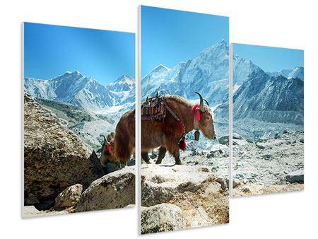 Hartschaumbild 3-teilig modern Das Himalaya-Gebirge
