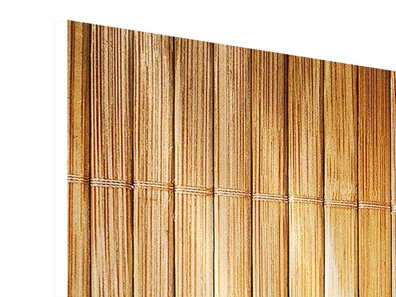 Hartschaumbild 3-teilig modern Bambusrohre