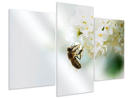 Hartschaumbild 3-teilig modern Die Hummel und die Blüte