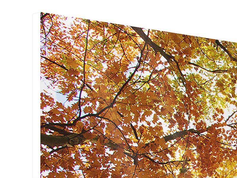 Hartschaumbild 3-teilig modern Herbstbäume