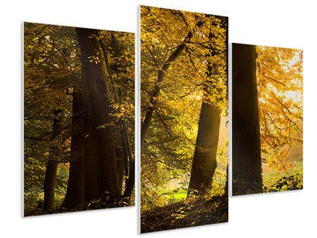 Hartschaumbild 3-teilig modern Herbstlaub