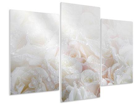 Hartschaumbild 3-teilig modern Weisse Rosen im Morgentau