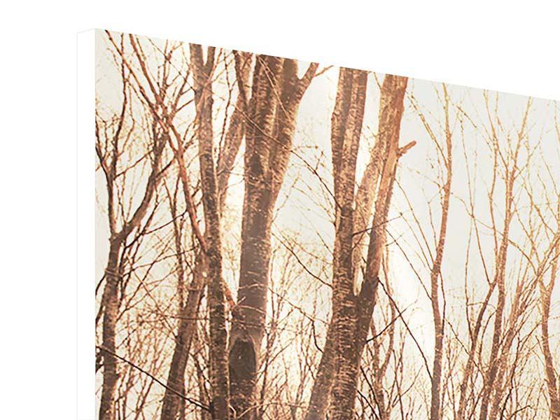 Hartschaumbild 3-teilig modern Der kahle Wald