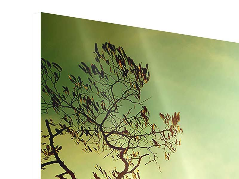 Hartschaumbild 3-teilig modern Bäume im Herbst