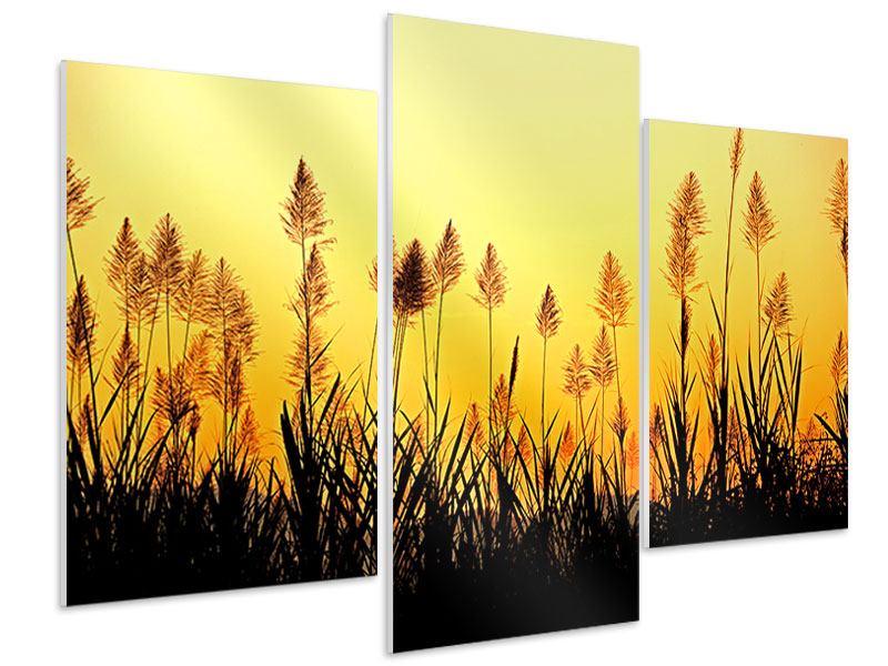 Hartschaumbild 3-teilig modern Die Blumen des Feldes