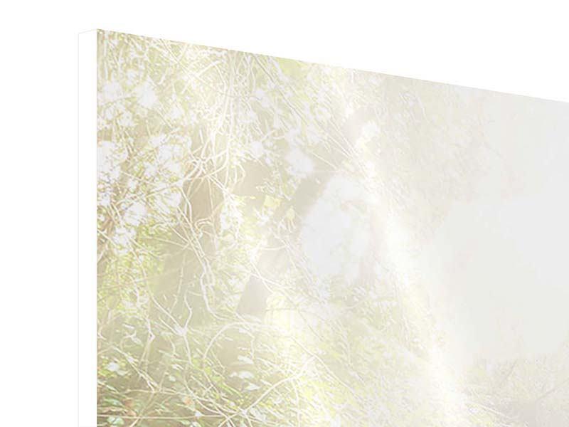 Hartschaumbild 3-teilig modern Die grüne Lagune