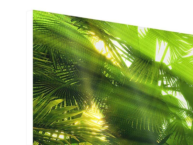 Hartschaumbild 3-teilig modern Sonnenaufgang im Regenwald