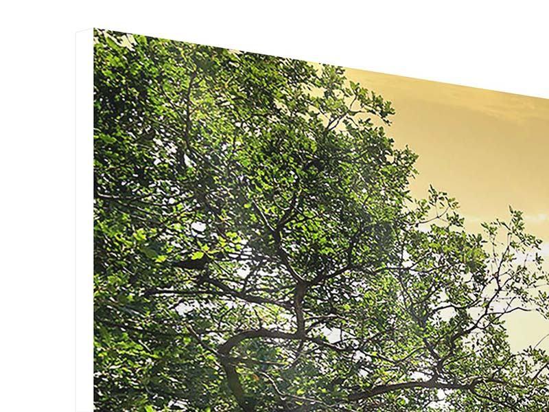 Hartschaumbild 3-teilig modern Am Ende des Waldes