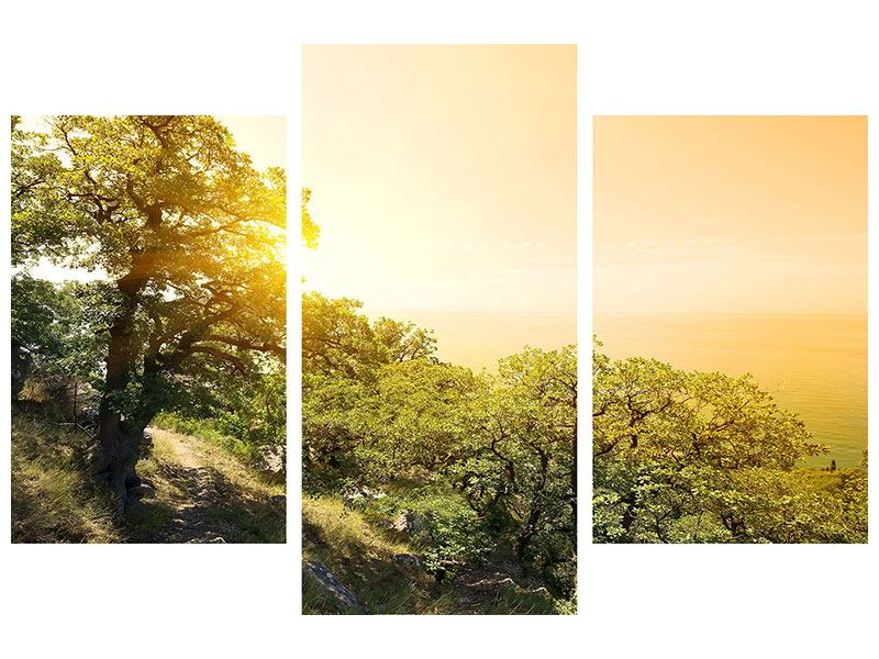 Hartschaumbild 3-teilig modern Sonnenuntergang in der Natur