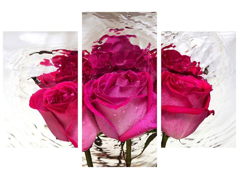 Hartschaumbild 3-teilig modern Die Rosenspiegelung