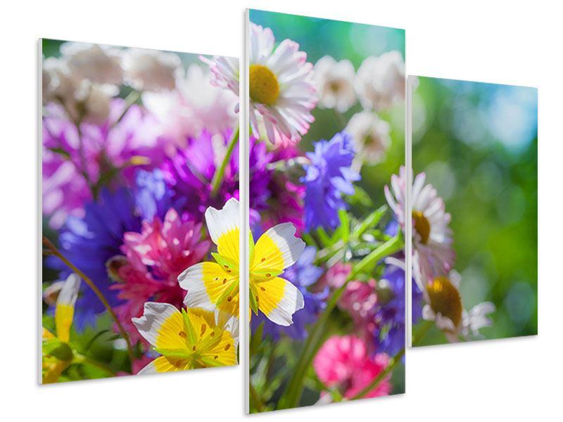 Hartschaumbild 3-teilig modern XXL Gartenblumen