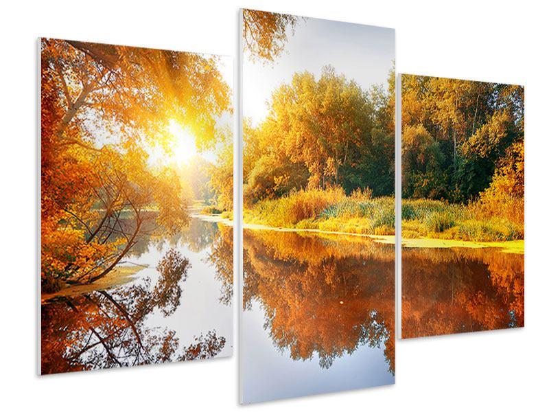 Hartschaumbild 3-teilig modern Waldspiegelung im Wasser