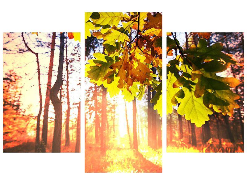 Hartschaumbild 3-teilig modern Herbst