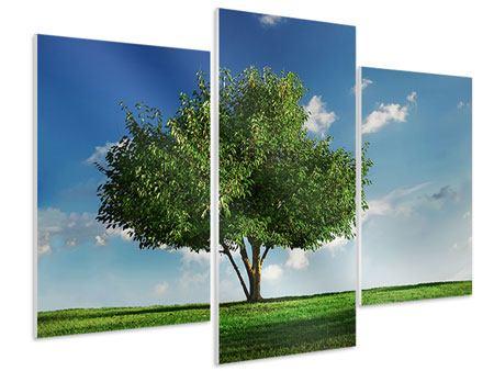 Hartschaumbild 3-teilig modern Baum im Grün