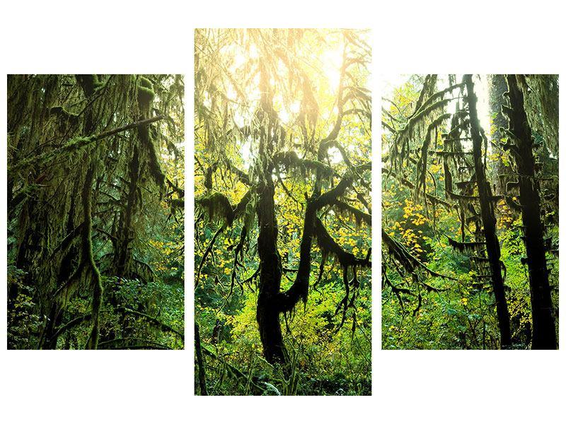 Hartschaumbild 3-teilig modern Verträumter Wald