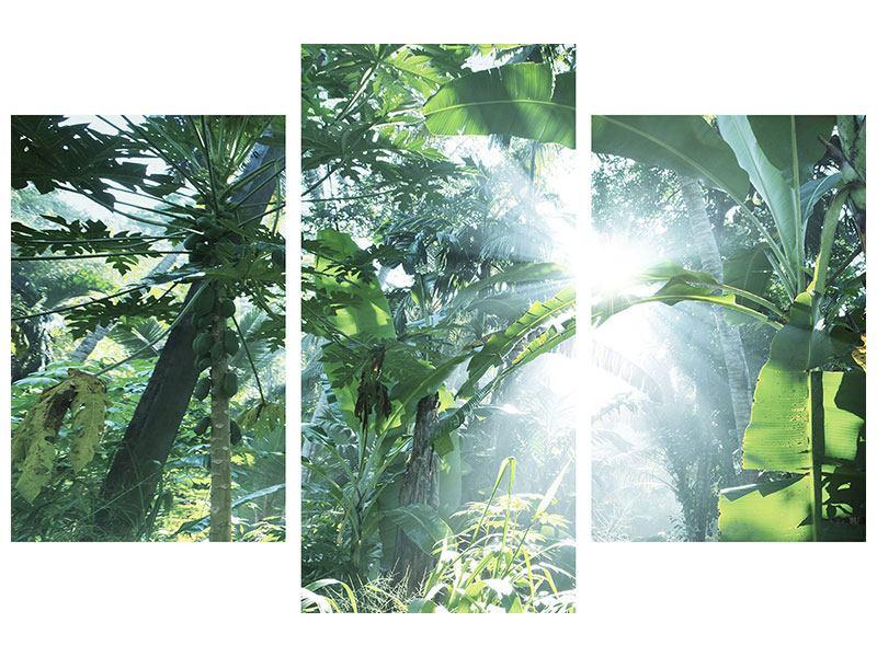 Hartschaumbild 3-teilig modern Dschungelstar