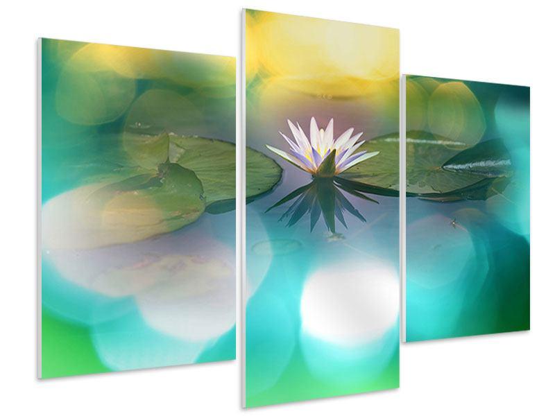 Hartschaumbild 3-teilig modern Lotus-Spiegelung