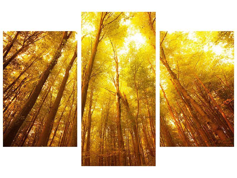 Hartschaumbild 3-teilig modern Herbstwald