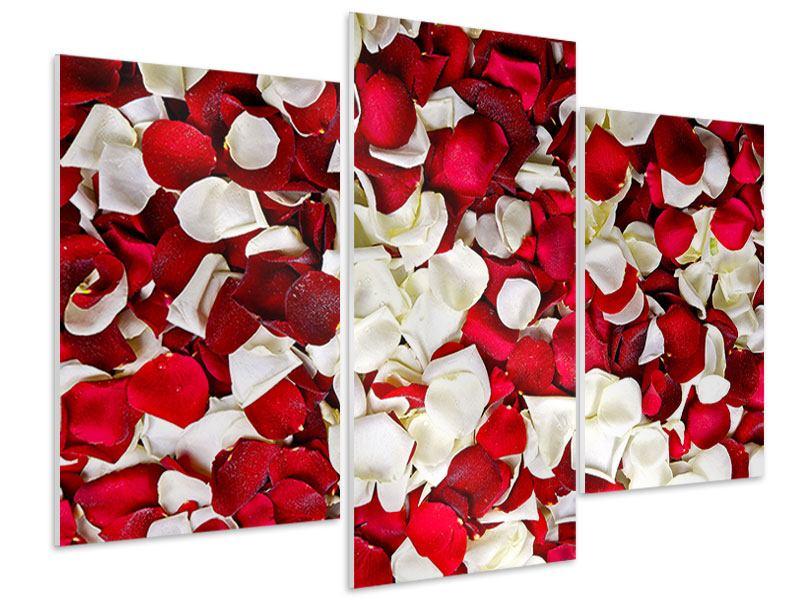 Hartschaumbild 3-teilig modern Rosenblätter