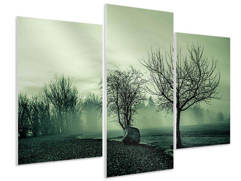 Hartschaumbild 3-teilig modern Der Auwald im Nebel