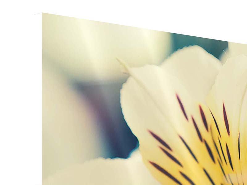 Hartschaumbild 3-teilig modern Tigerlilien