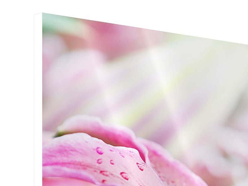 Hartschaumbild 3-teilig modern Lilien im Tau