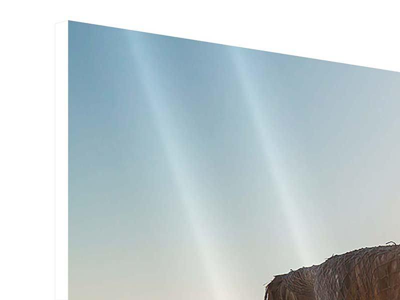 Hartschaumbild 3-teilig modern Der Sonnenschirm