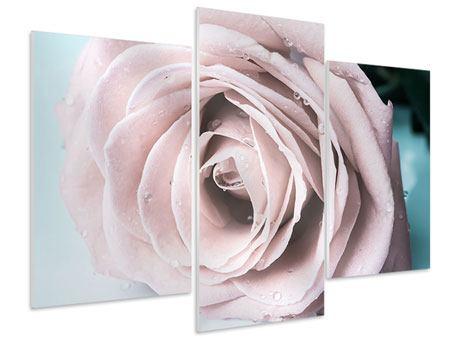 Hartschaumbild 3-teilig modern Pastellrose