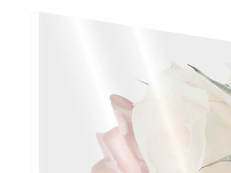 Hartschaumbild 3-teilig modern Rosenromantik
