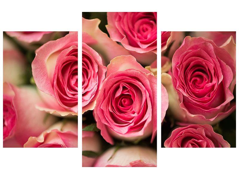 Hartschaumbild 3-teilig modern Rosenliebe