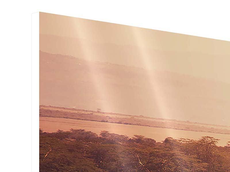 Hartschaumbild 3-teilig modern Malerisches Afrika