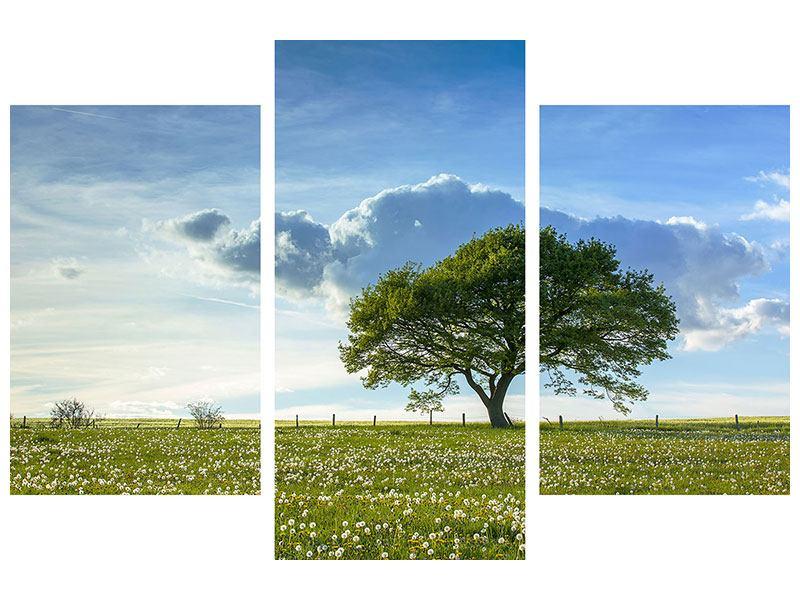 Hartschaumbild 3-teilig modern Frühlingsbaum