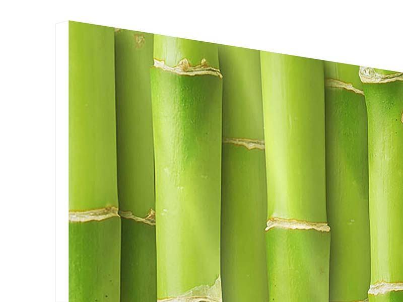 Hartschaumbild 3-teilig modern Bambuswand