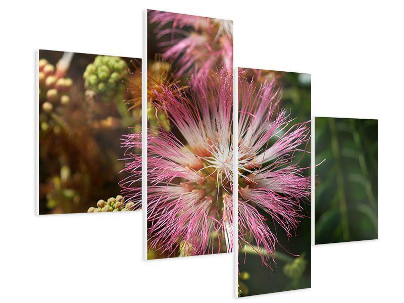 Hartschaumbild 4-teilig modern Die Regenbaumblüte