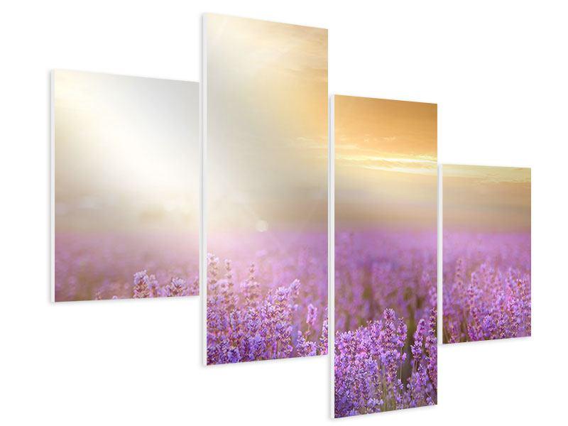 Hartschaumbild 4-teilig modern Sonnenuntergang beim Lavendelfeld