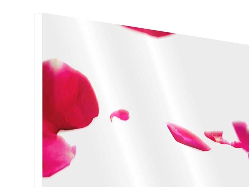 Hartschaumbild 4-teilig modern Für mich soll`s rote Rosen regnen