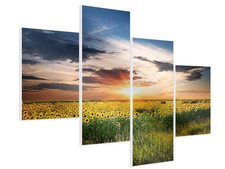 Hartschaumbild 4-teilig modern Ein Feld von Sonnenblumen