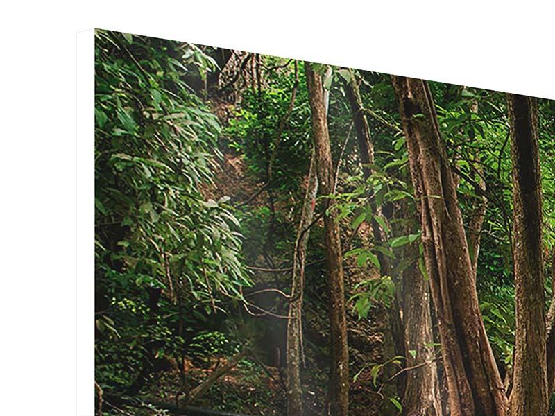 Hartschaumbild 4-teilig modern Deep Forest