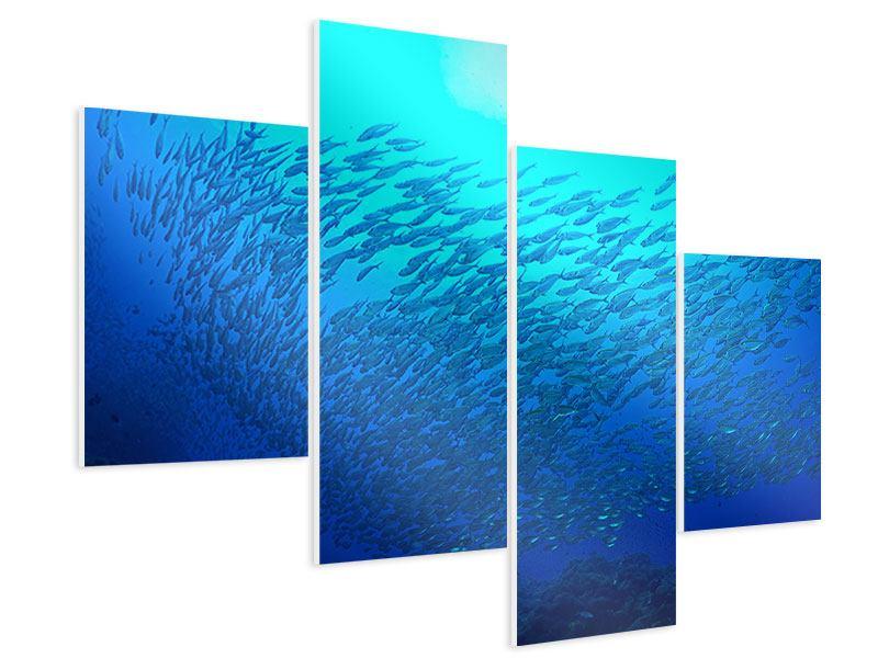 Hartschaumbild 4-teilig modern Fischwelt