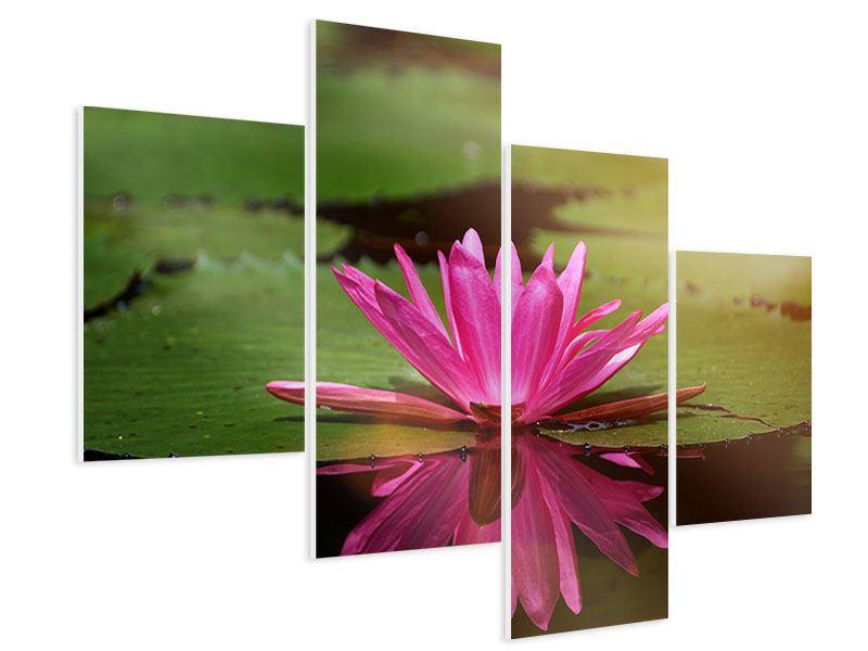 Hartschaumbild 4-teilig modern Lotus im Wasser