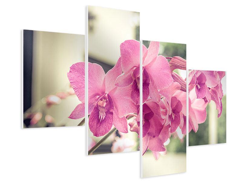 Hartschaumbild 4-teilig modern Ein Fensterplatz für die Orchideen