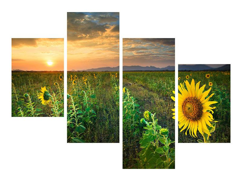 Hartschaumbild 4-teilig modern Sonnenblumenfeld im Abendrot